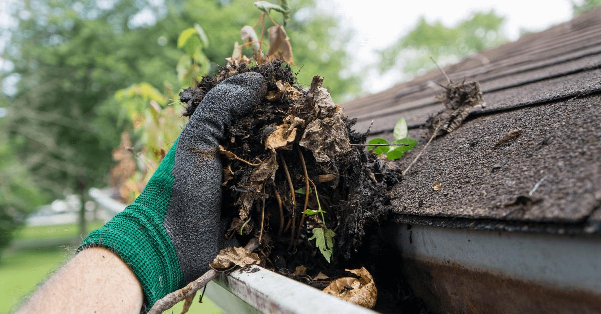 keep-your-gutters-clean-to-keep-your-roof-healthy